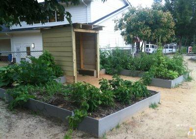 Raised fruit and vegetable garden