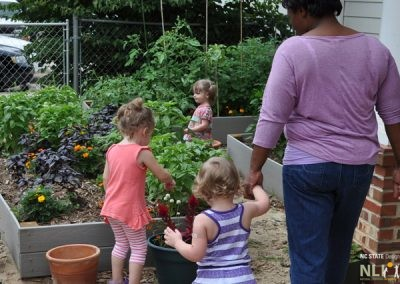 Exploring the fruit and vegetable garden
