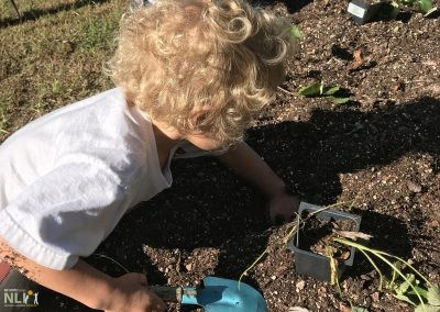 Children planting in the garden