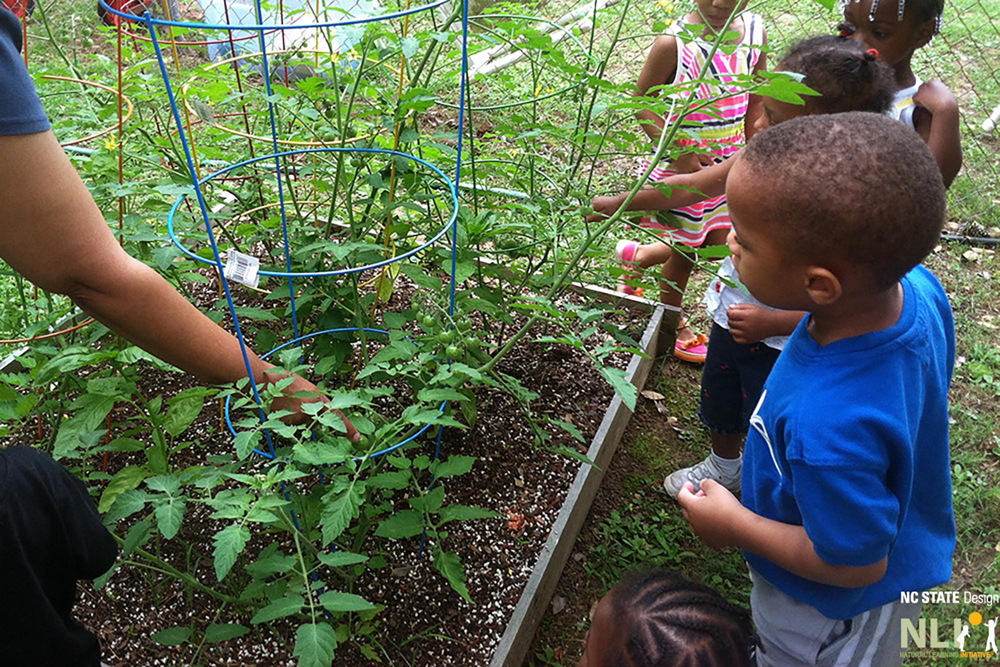 Gardening Series 2