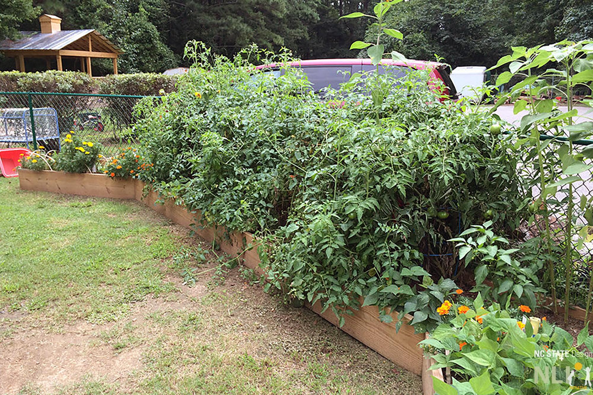 Gardening Series 3