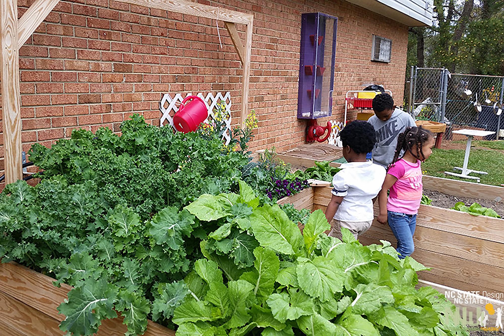 Gardening Series 5