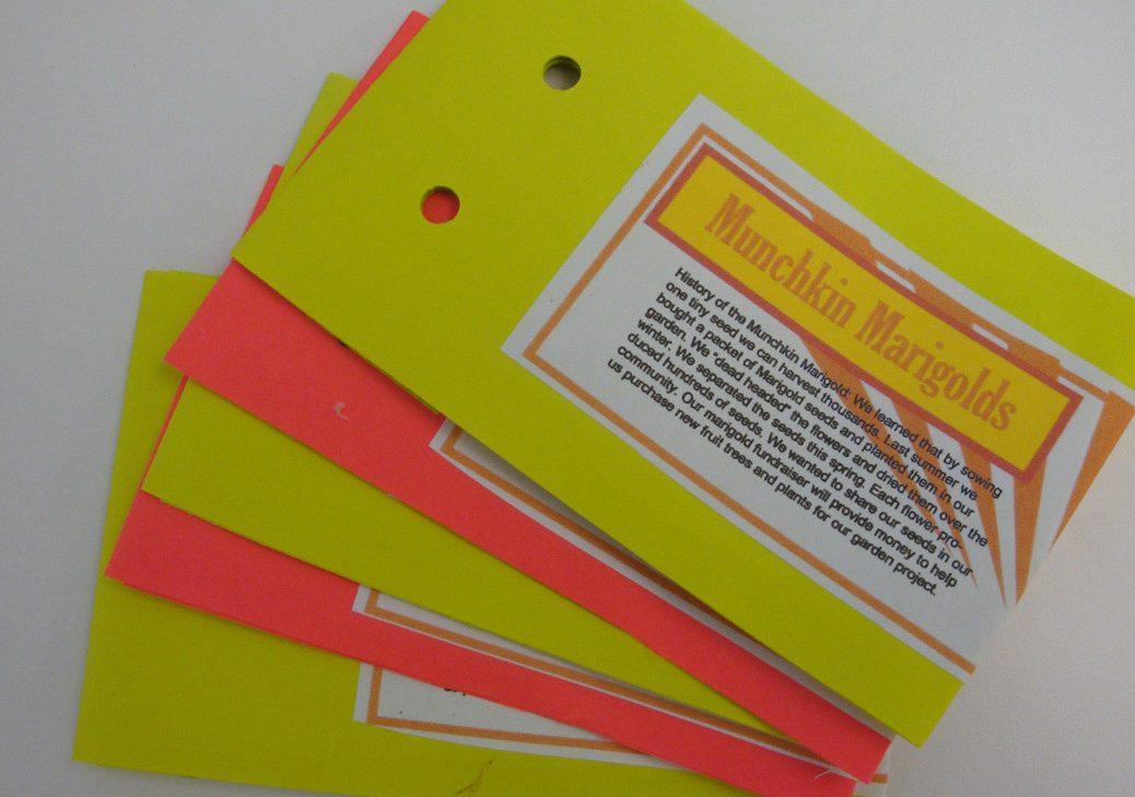 5. Munchkin Marigold Packets_DSC08072_LO