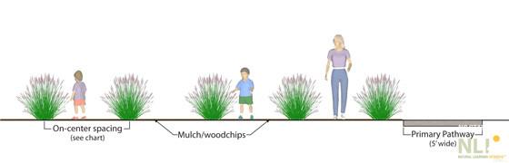 Figure 2. Mature grass maze (maximum spacing): Section view