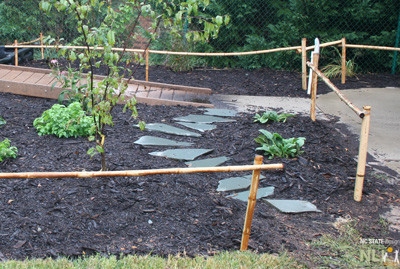 Bamboo posts and rails. Stepping stones create an exploratory pathway that provides access to new plants.