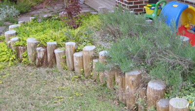 Cedar logs protect plants and define the edge of the lawn.