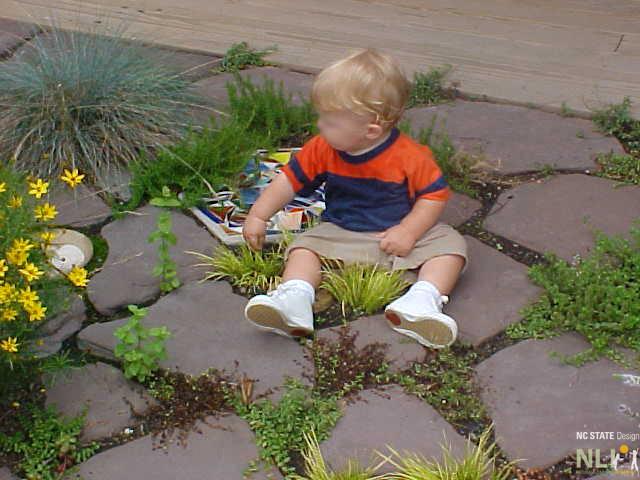 Sensory Gardens