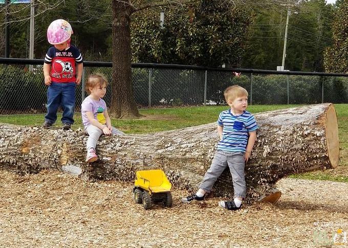 Balancing Log 4