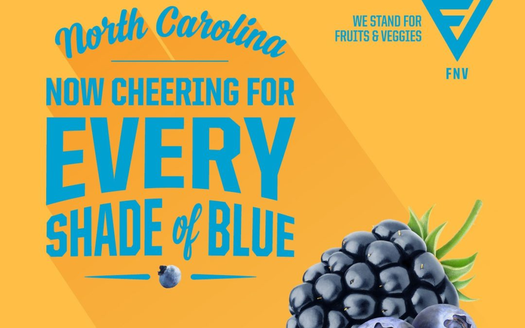 Proud to support Blue Cross NC as they bring TeamFNV to NC!
