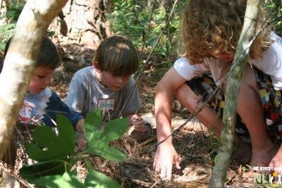 Nature Play Corps