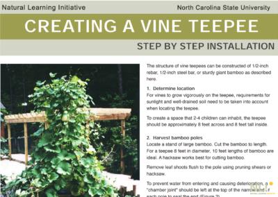Creating a Vine Teepee
