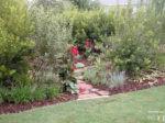 Landscape Plant List