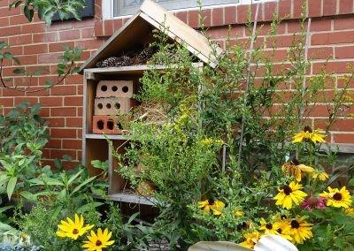 Wildlife Habitat Garden