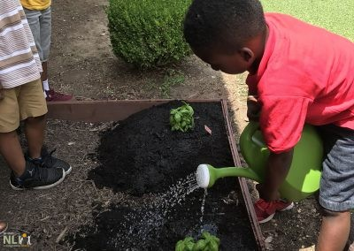 Watering new plants