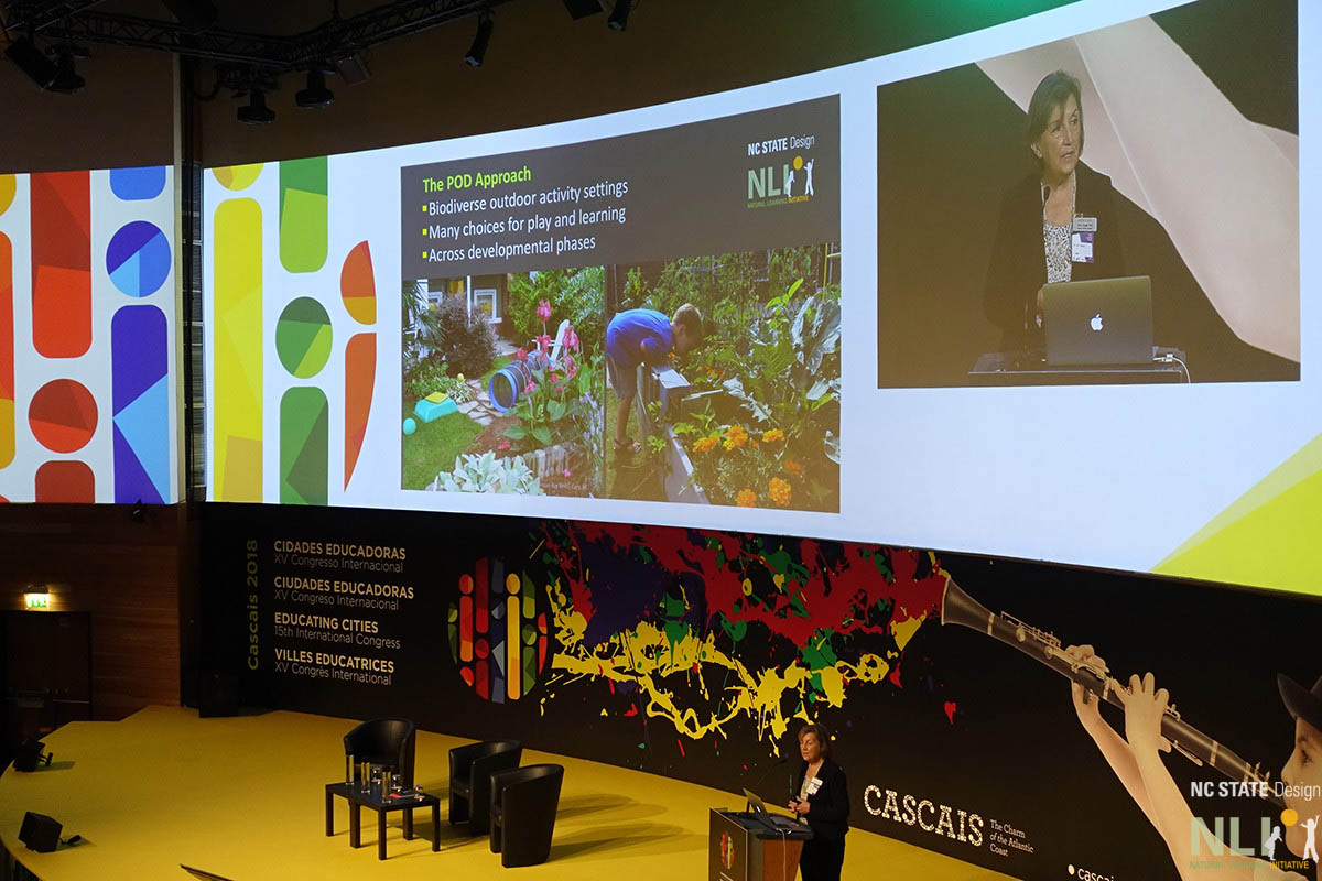 Nilda Cosco: The POD Approach