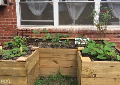 Raised fruit and vegetable garden by classroom windows