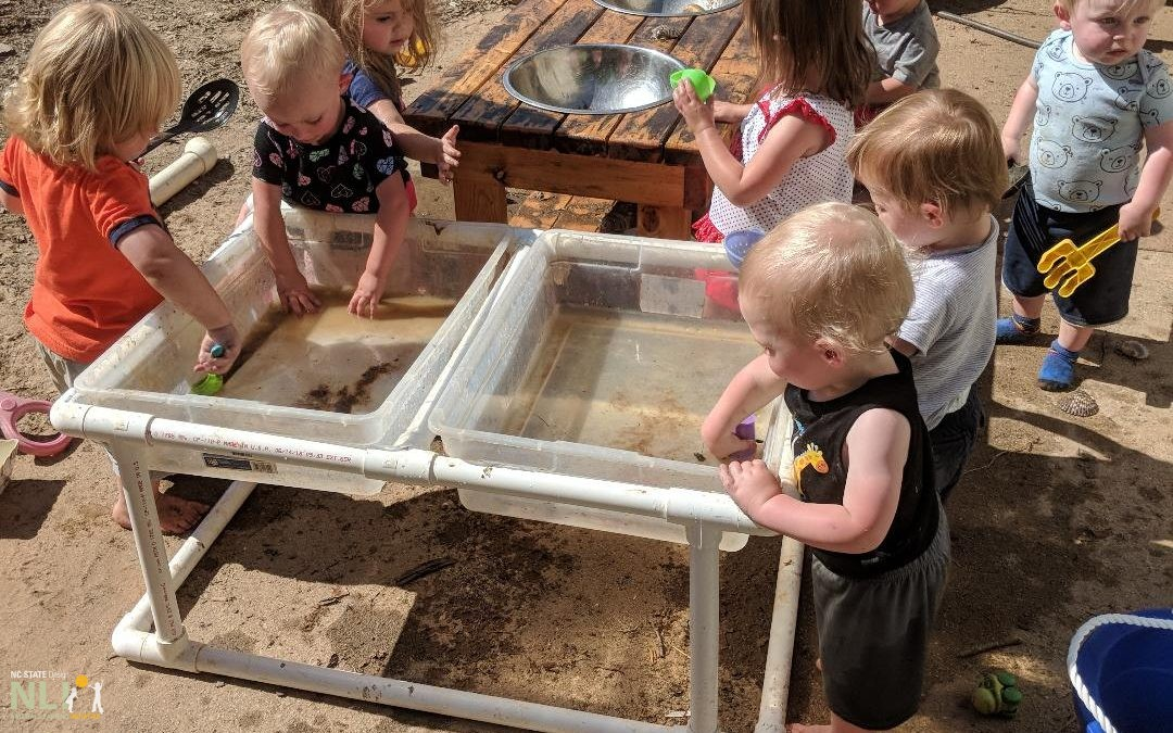 Blue Ridge Community College: Nessa's Young'uns Natural Play Center