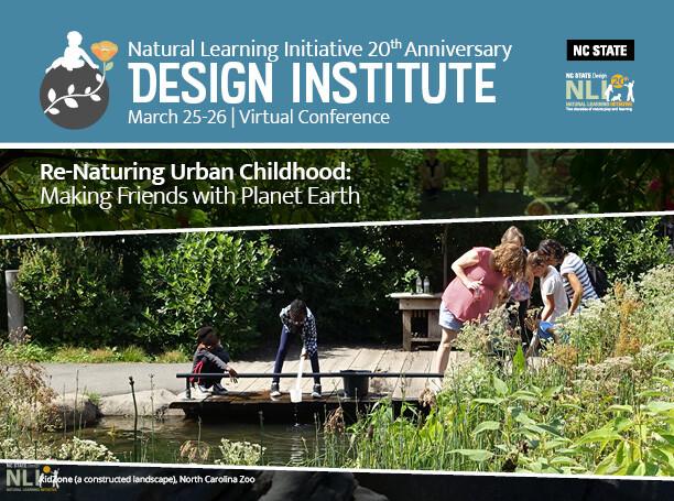 20th Anniversary NLI Design Institute