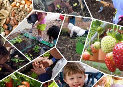 Gardening Activity Guide